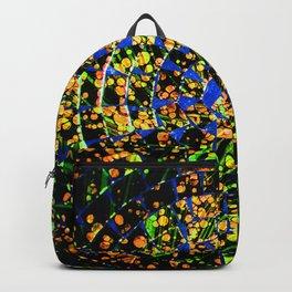 Gamma Ray Burst Backpack