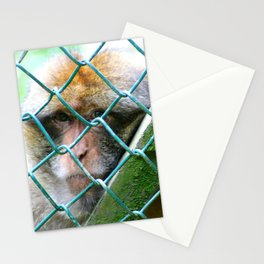 Monkey Cage Stationery Cards