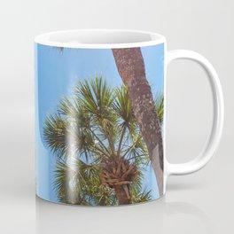St Augustine Palm Trees Coffee Mug