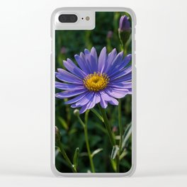 Blue Aster Clear iPhone Case