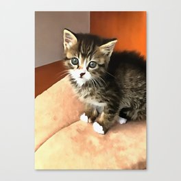Tabby Cat Named Pipsqueak  Canvas Print