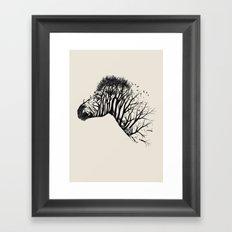 Wild Zebra Framed Art Print