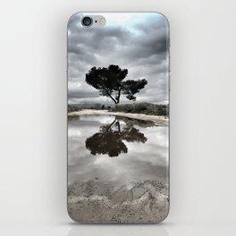 Potrero Creek iPhone Skin