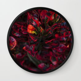 Croton in Red Wall Clock