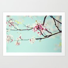 springs beauty Art Print
