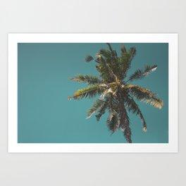 Palmtree in the sky Art Print