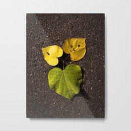 Leaf Love No.2 Metal Print