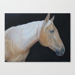 Palomino Horse Canvas Print