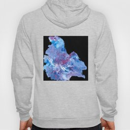 Abstract Sea Lion Hoody