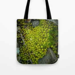 The tiny green forest Tote Bag