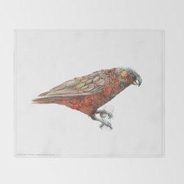 New Zealand parrot, the Kaka Throw Blanket