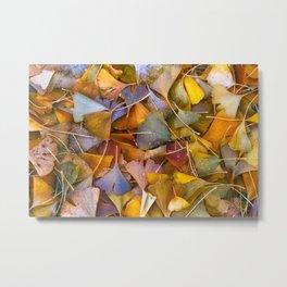 Fallen Ginkgo Leaves Metal Print