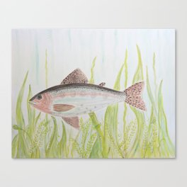 Swimmingly Canvas Print