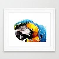 parrot Framed Art Prints featuring Parrot by Regan's World