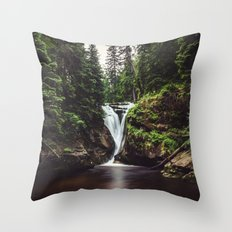 Pure Water Throw Pillow