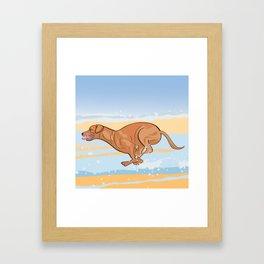 Beach Vizsla Framed Art Print