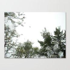 rainy trees ~ nature Canvas Print