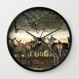 Richmond Park, Jan'16 Wall Clock