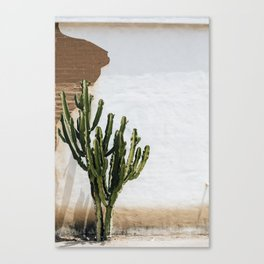 California Cactus Canvas Print