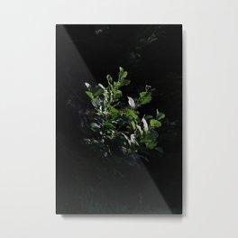 Green jewel Metal Print