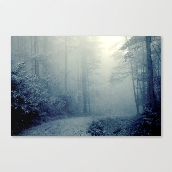Wander in a Woodland Fog Canvas Print