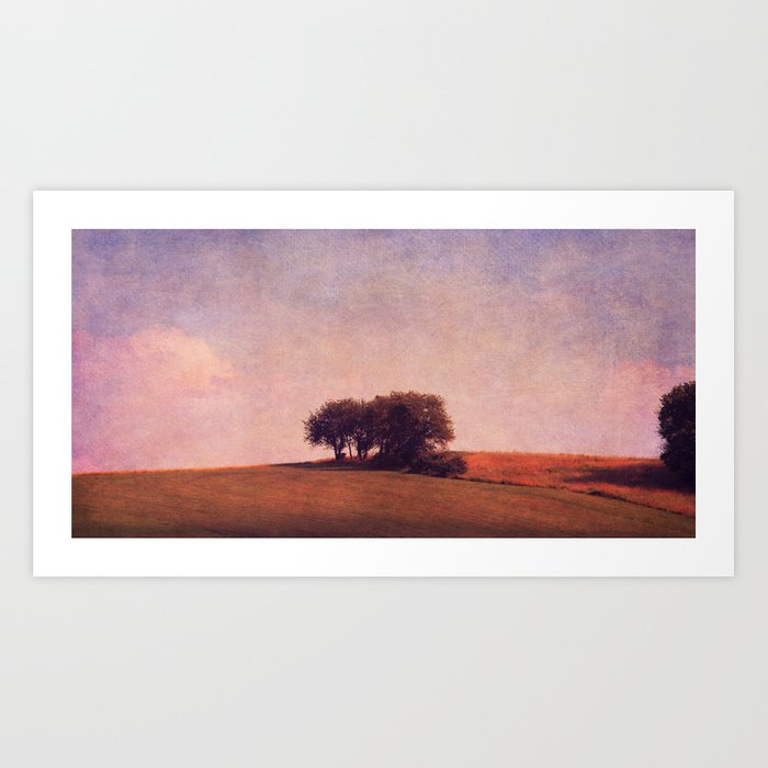 field of summer Art Print