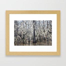 Tree Wisps Framed Art Print