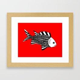 Menpachi Framed Art Print