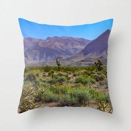 Painted Desert - IV Throw Pillow