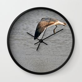 The Birds of Cutler Bay Wetlands (Amazing Grace!) Wall Clock