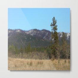 Winter on Big Creek Road.... Metal Print