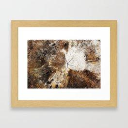 Tree Stump Ring Framed Art Print
