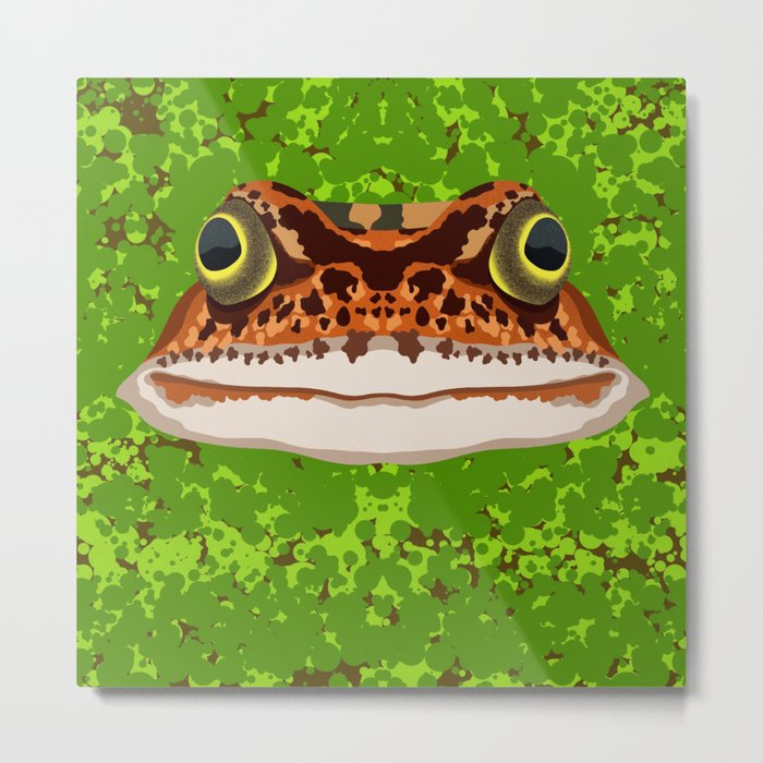 Frog Pond Metal Print