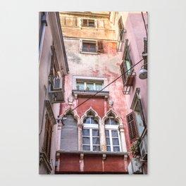 Pink Passage Canvas Print