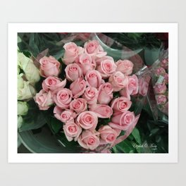 Pink Roses at Farmers Market Art Print
