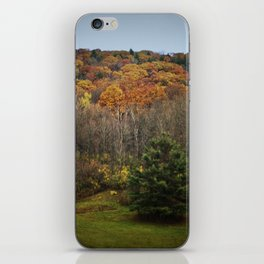 October Mountain Forest iPhone Skin