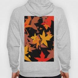 Fall Color Hoody