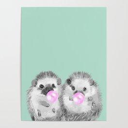Playful Twins Hedgehog Poster