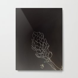 Black and White Alpinia purpurata – Red Ginger Flower, Bogota, Colombia Metal Print