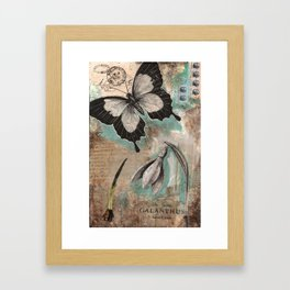 Botanical Collage  Framed Art Print