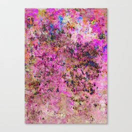 Mapping the Unmappable Canvas Print