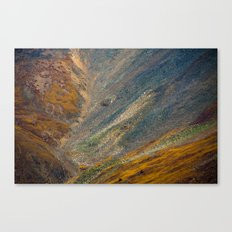 electric scree Canvas Print