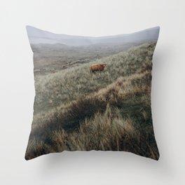 Scottish Highlander ll   Dutch dunes   Nature photography print   Holland   Wall art Art print Throw Pillow