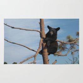 Baby Bear Rug