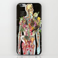 skeleton iPhone & iPod Skins featuring Skeleton by Ben Giles