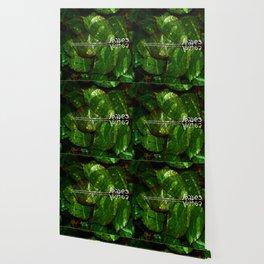Leaves V4 Wallpaper