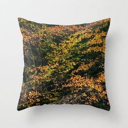 Minnewaska Autumn 02 Throw Pillow