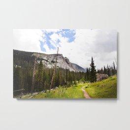 Into The Mountains Metal Print