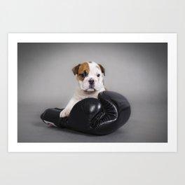 English bulldog puppy Art Print