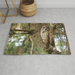 Beautiful Barred Owl Rug